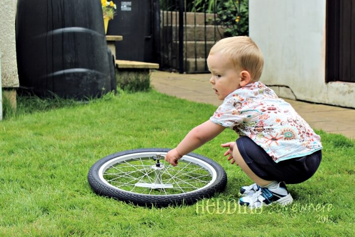 Asher and the Wheel